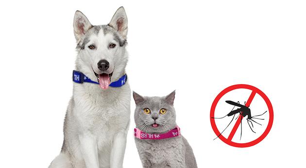 Antiparazitný obojok pre psy a mačky s účinkom až 4 mesiace
