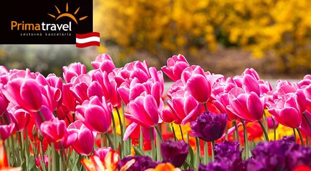 Zájazd na výstavu kvetov a záhrad v rakúskom mestečku Tulln