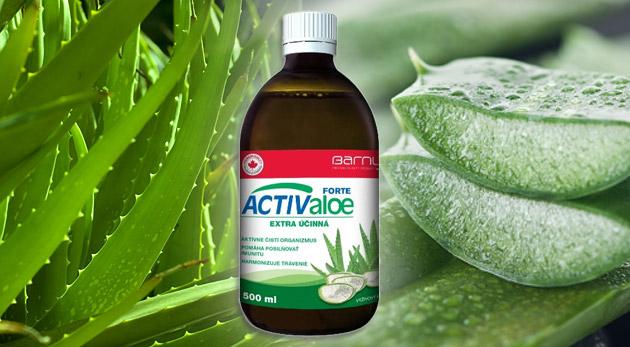 Aloe Vera šťava (gél) - zázračná rastlina pre každého.