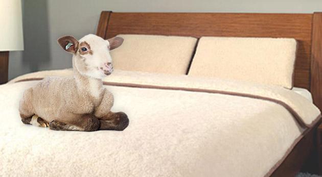 Posteľná súprava z ovčej vlny na dlhé zimné večery