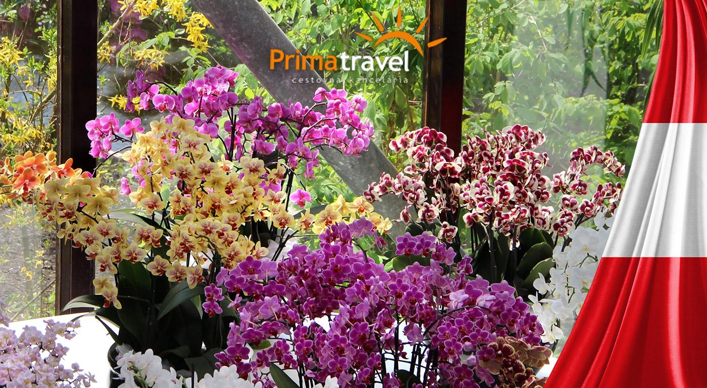 Výlet na najväčšiu výstavu orchideí v Rakúsku a do známeho kláštora v Klosterneuburgu