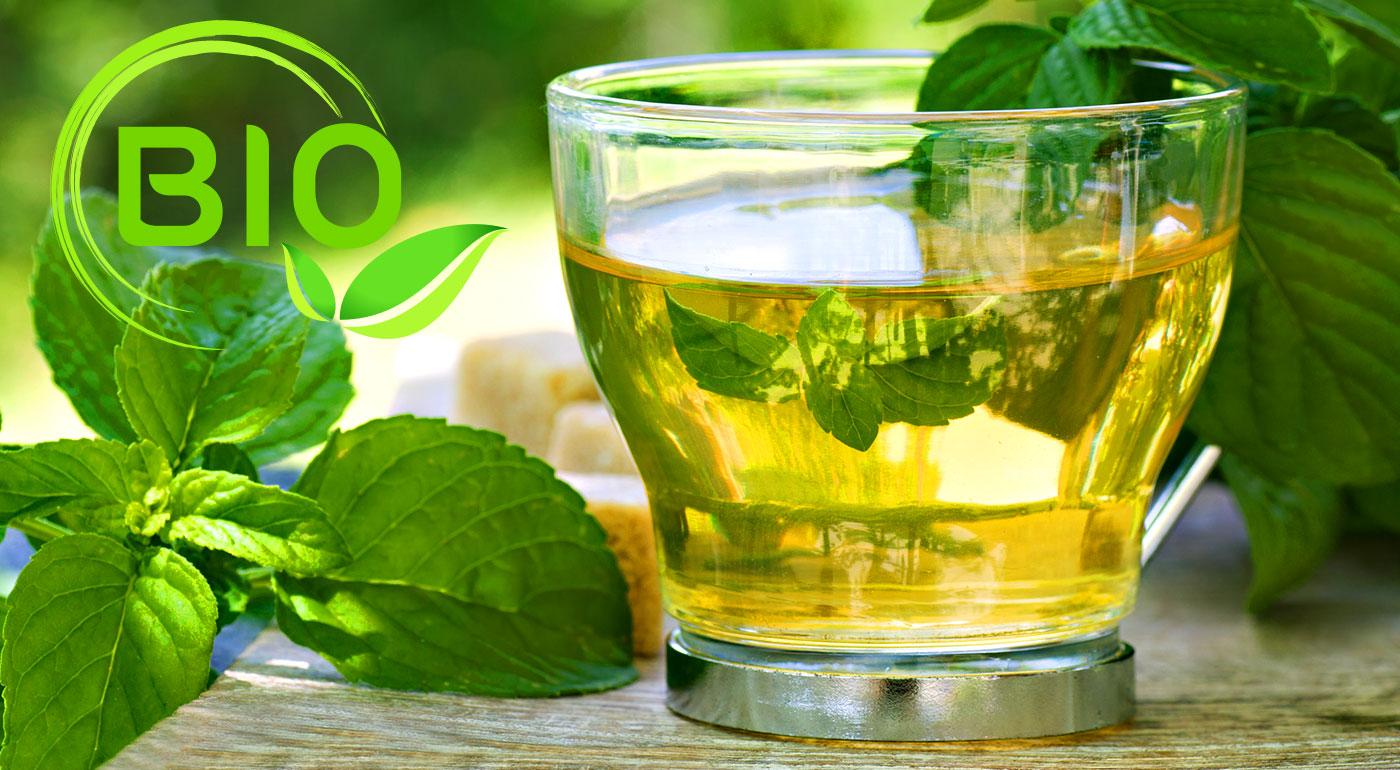 Kvalitné BIO sypané čaje SOLARIS