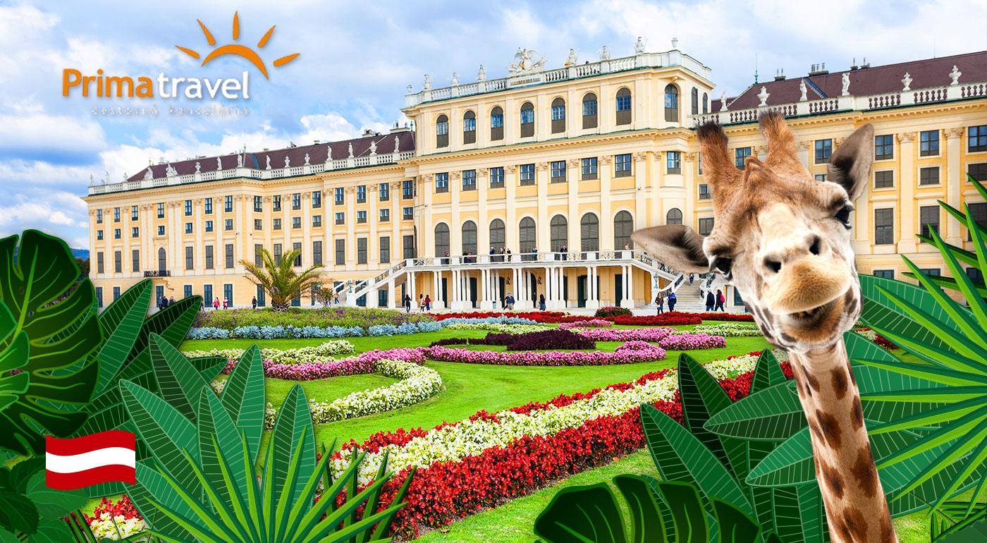 Zájazd do Viedne pre 1 osobu s návštevou viedenskej ZOO, zámku Schönbrunn a jeho krásnych záhrad