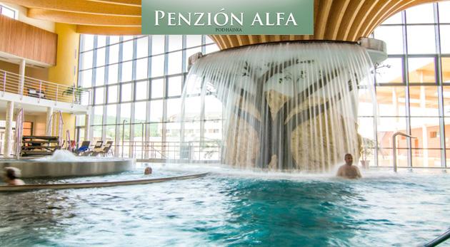 Pohoda pri termálnom kúpalisku na juhu Slovenska v Penzióne Alfa so skvelými zľavami do Rímskych kúpeľov