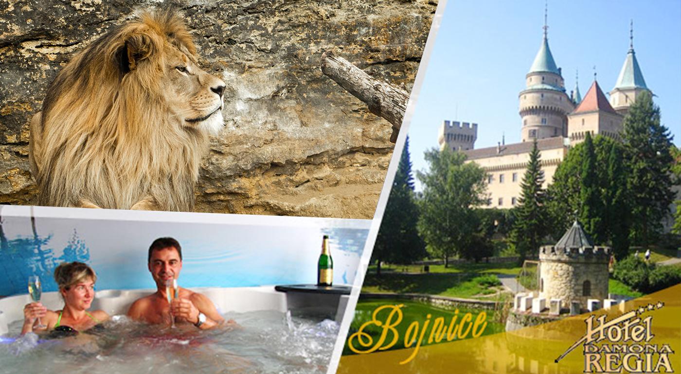 Relaxačný pobyt pre dvojicu v Hoteli Regia*** v kúpeľných Bojniciach. Platnosť kupónu až do konca roka 2016!