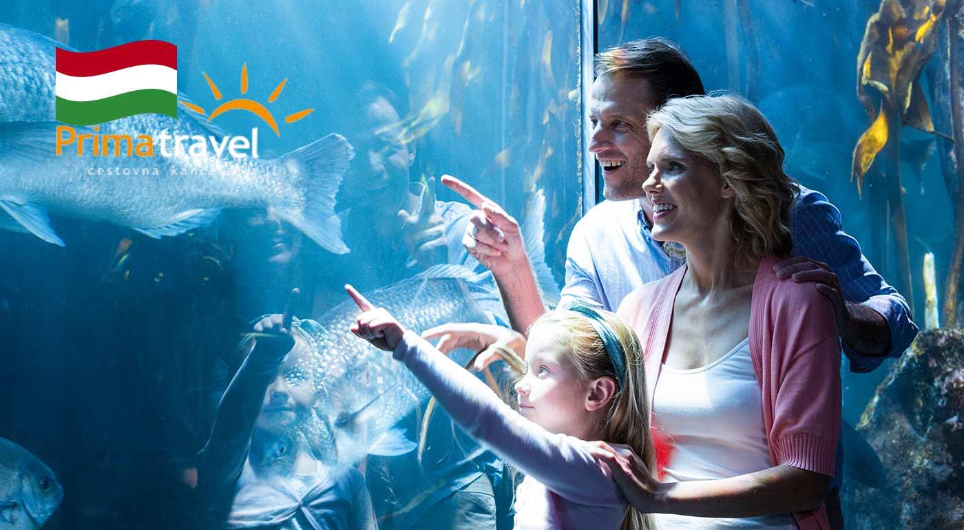 Prežite deň plný zážitkov v historickej Budapešti s návštevou podmorského Tropikária