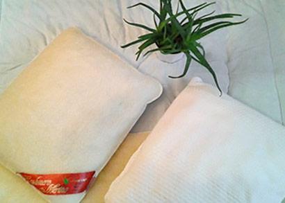 Ovčie rúno s prímesou aloe vera pre zdravší spánok - Sada deky a dvoch vankúšov z ovčej vlny