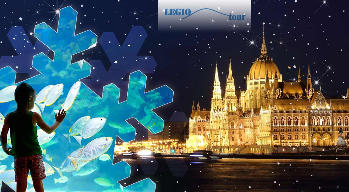 Spojte vianočné trhy v Budapešti s návštevou podmorského sveta v Tropicariu