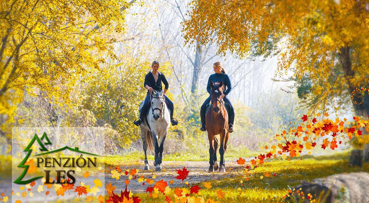 Prejdite sa prírodou na konskom chrbte - užite si 3 alebo 4 dni v penzióne Les na Kysuciach s wellness