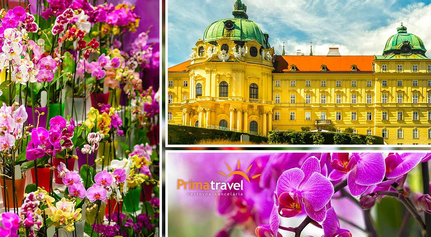 Urobte si deň v znamení nádherných orchideí, lahodného vína a navštívte múry starobylého kláštora v Klosterneuburgu