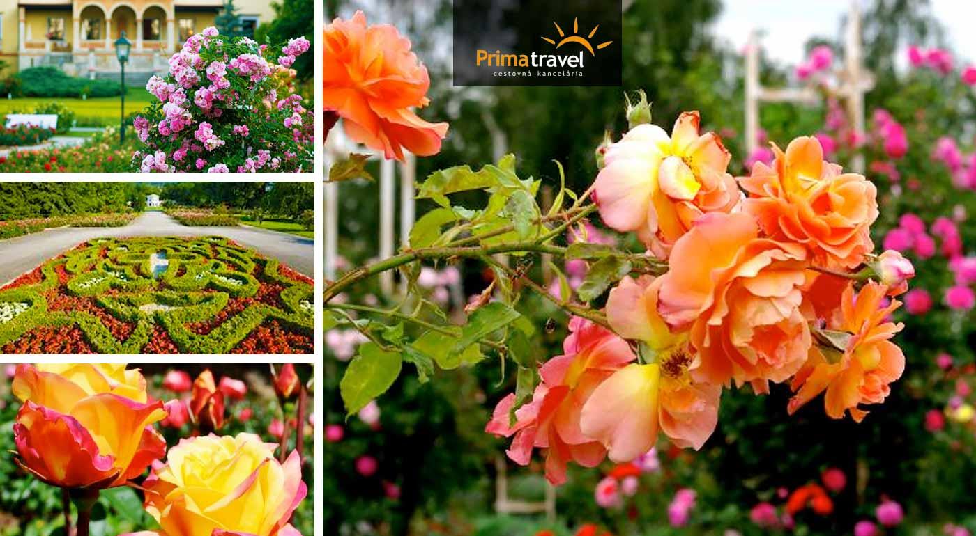 Poznávací zájazd na opradený zámok v Mayerlingu a vôňou až 600 druhov ruží v Baden bei Wien - nástupné miesta v Nitre, Seredi, Trnave a Bratislave