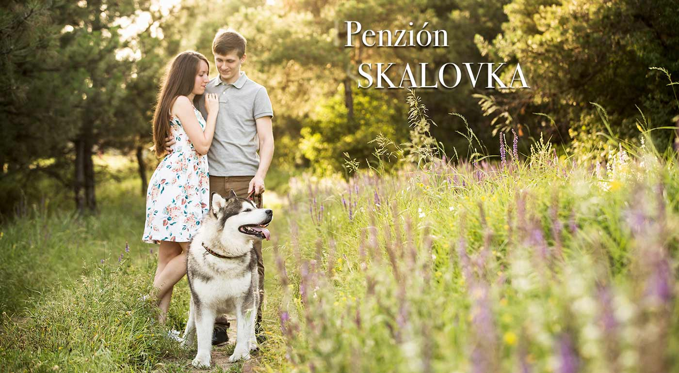 Pobyt pre dvoch v rodinnom Penzióne Skalovka na Kysuciach - nádherná príroda na dosah!