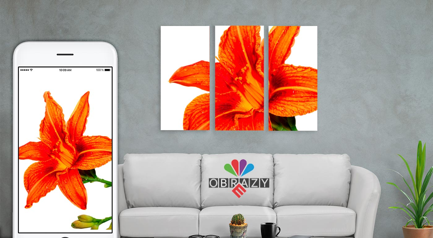 3-dielny a 4-dielny obraz na plátne s fotografiou podľa vlastného výberu