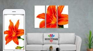 Zľava 59%: Vylepšite svoj interiér originálnym doplnkom, ktorý nemá nikto iný. Zaveste si na stenu 3 alebo 4-dielny obraz na plátne s fotografiou podľa vášho vlastného výberu. V ponuke rôzne veľkosti.