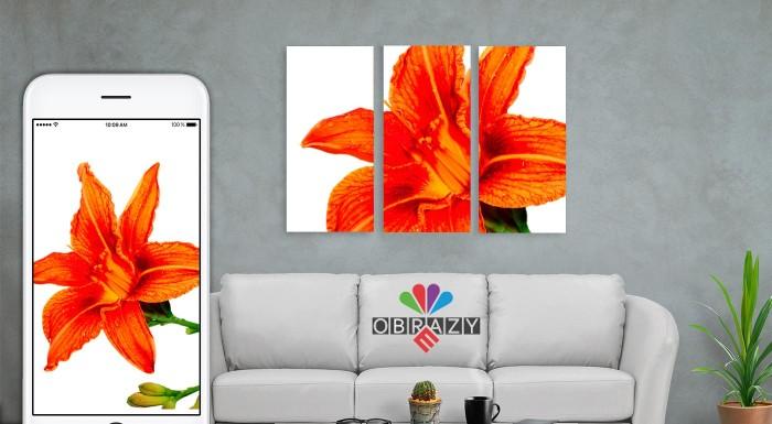 Fotka zľavy: Vylepšite svoj interiér originálnym doplnkom, ktorý nemá nikto iný. Zaveste si na stenu 3 alebo 4-dielny obraz na plátne s fotografiou podľa vášho vlastného výberu. V ponuke rôzne veľkosti.
