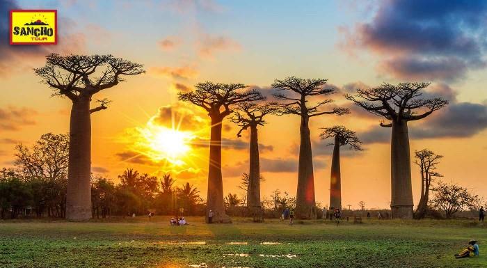Fotka zľavy: Madagaskar je splnený cestovateľský sen. Pripravte sa na 17-dňové dobrodružstvo na ostrove, ktorý ponúka nevšedný koktejl rozmanitej prírody, ale aj pohostinnosť domorodcov.