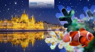 Zľava 44%: Spoznajte podmorský svet v Tropicariu v Budapešti a naplňte si bruchá fantastickými špecialitami na vianočných trhoch vo vysvietenej metropole Maďarska.