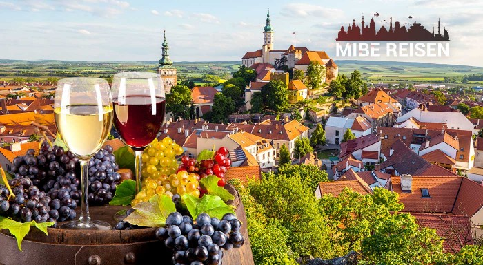 Fotka zľavy: Zamilujte sa do južnej Moravy. Región bohatý na skvelé víno a nádherné pamiatky vás pozýva navštíviť zámky Milotice a Lednice, či okúsiť zábavu na Pálavskom vinobraní. Neseďte doma, objavujte!