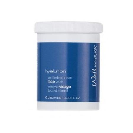 Wellmaxx Hyaluron - čistiaca emulzia facewash (250 ml)