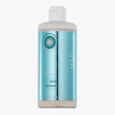Wellmaxx detox detoxikačné čistiace tonikum (500 ml)