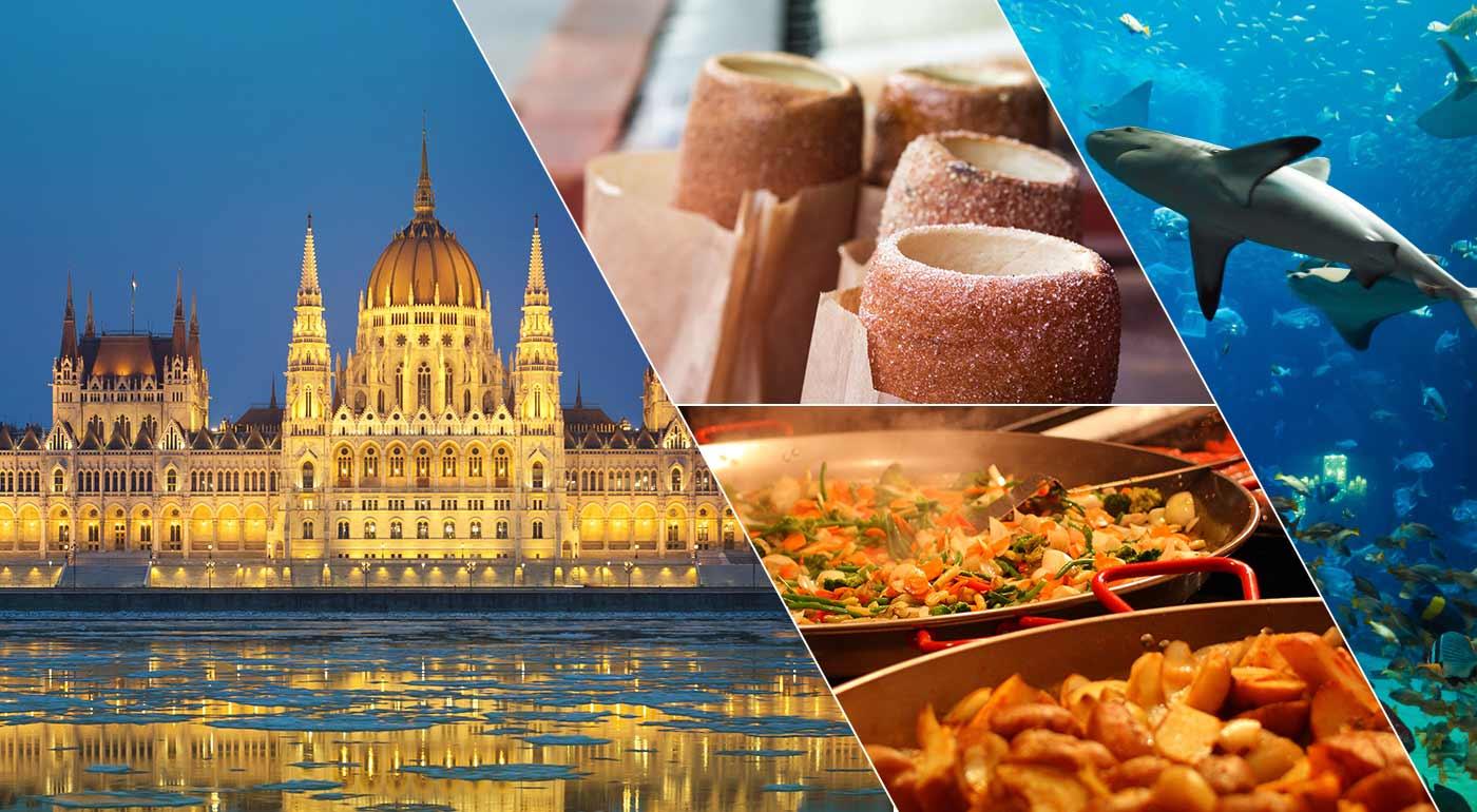 Fotka zľavy: Budapešť: 2-dňový adventný zájazd do rozsvietenej metropoly Maďarska s návštevou trhov, prehliadkou mesta a Tropikáriom