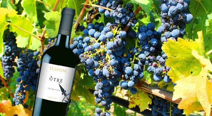 Fotka zľavy: Víno Primitivo Òtre ocenené medailou AWC Vienna