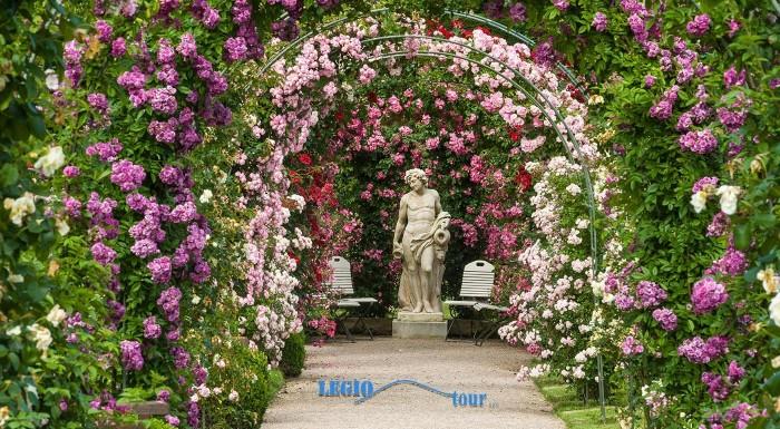Navštívte park kláštora Heiligenkreuz a festival Dni ruží počas 1-dňového zájazdu v rakúskom Badene. Obdivujte históriu mesta a ruže, ktoré vás omámia svojou krásou i vôňou.