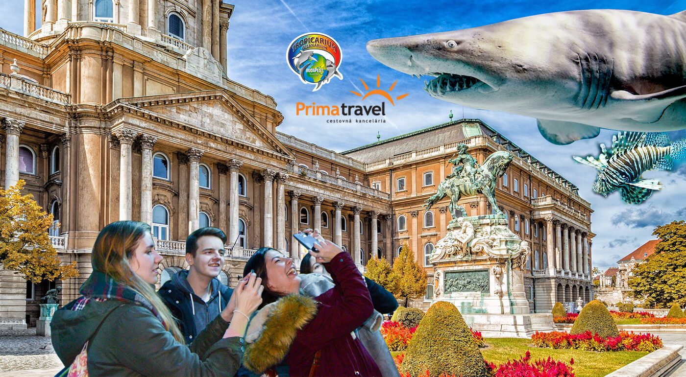 Budapešť: zážitok veľký ako oceán na víkendovom zájazde s návštevou podmorského sveta Tropikárium