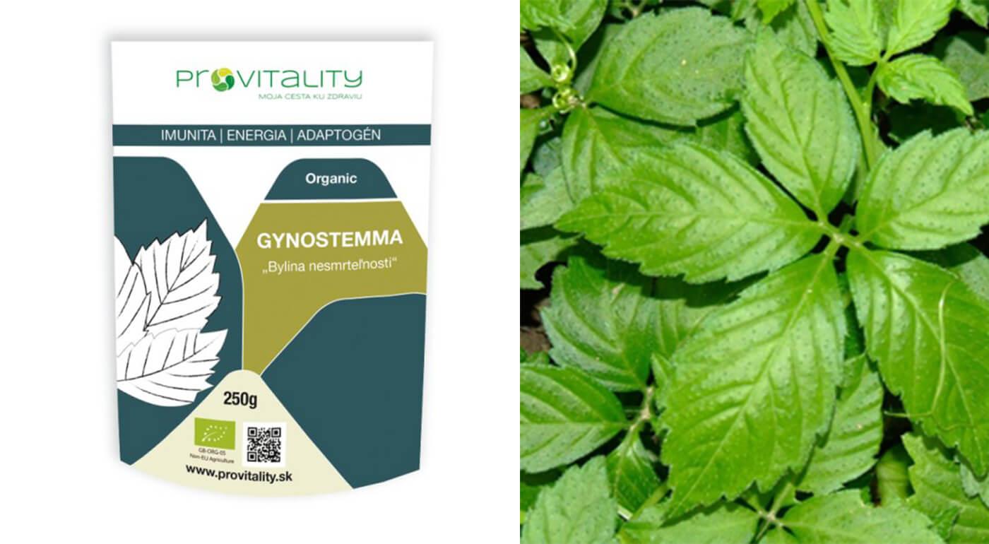 100% prášok z byliny Gynostemma (250 g)