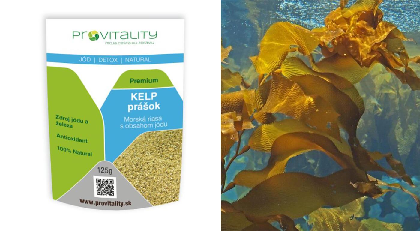 100% prášok z morskej riasy kelp (125 g)
