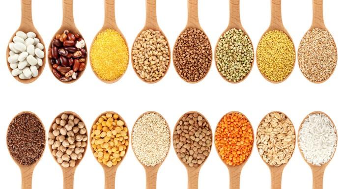 Biomiska a semienka na klíčenie