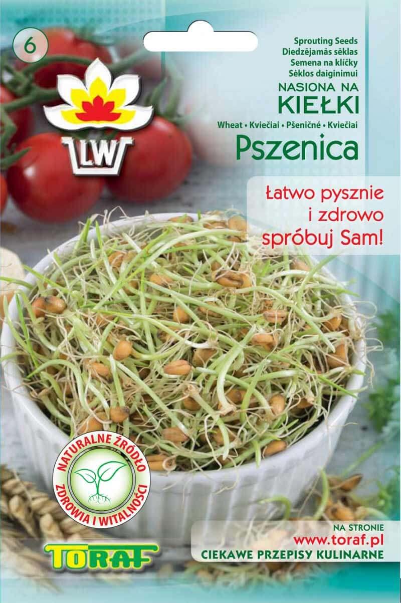 Toraf Pšenica 50 g Semienka na klíčenie
