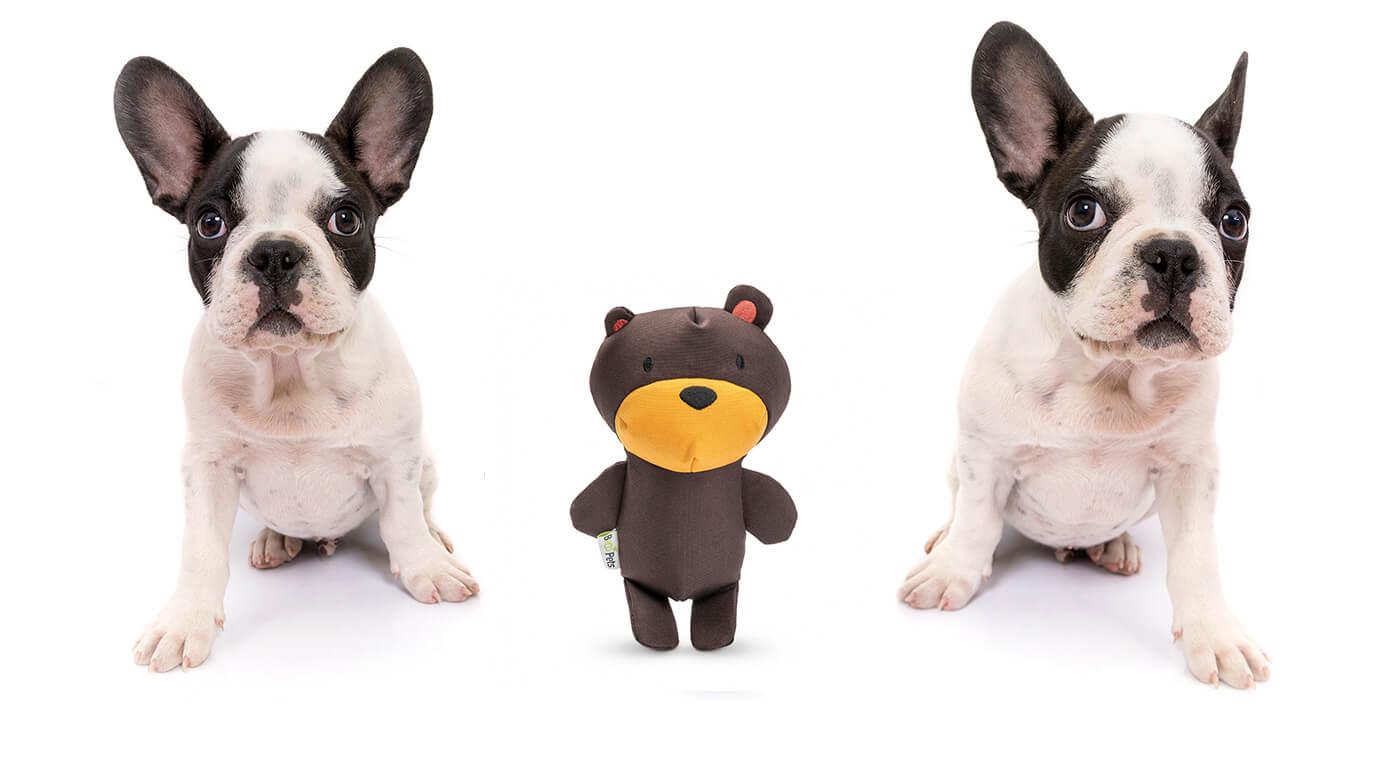 Pískacie hračky pre psy z ekologických materiálov - mäkký macko, papagáj alebo aligátor v 3 veľkostiach pre rôzne plemená