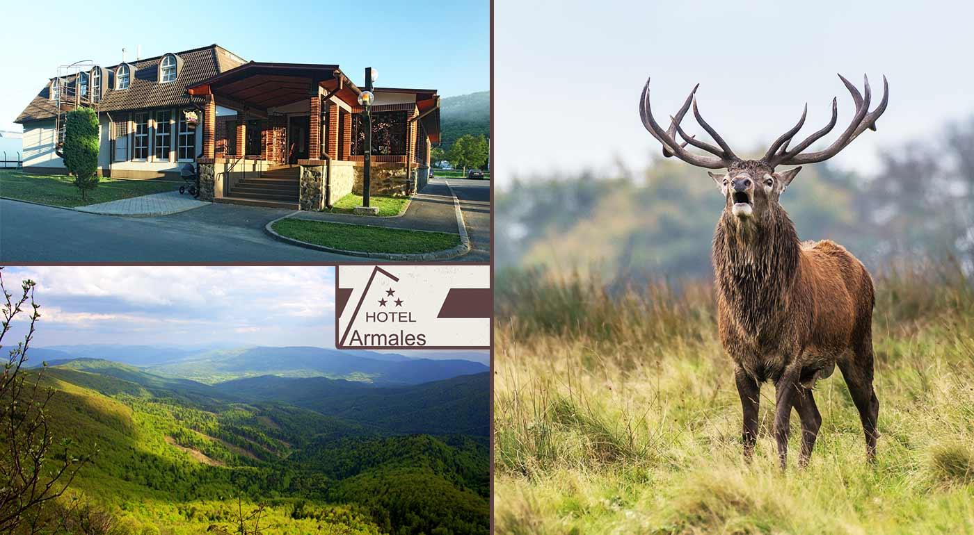 Zážitkový pobyt v Hoteli Armales*** v prostredí Národného parku Poloniny s volaním divočiny priamo v horách aj so sprievodcom