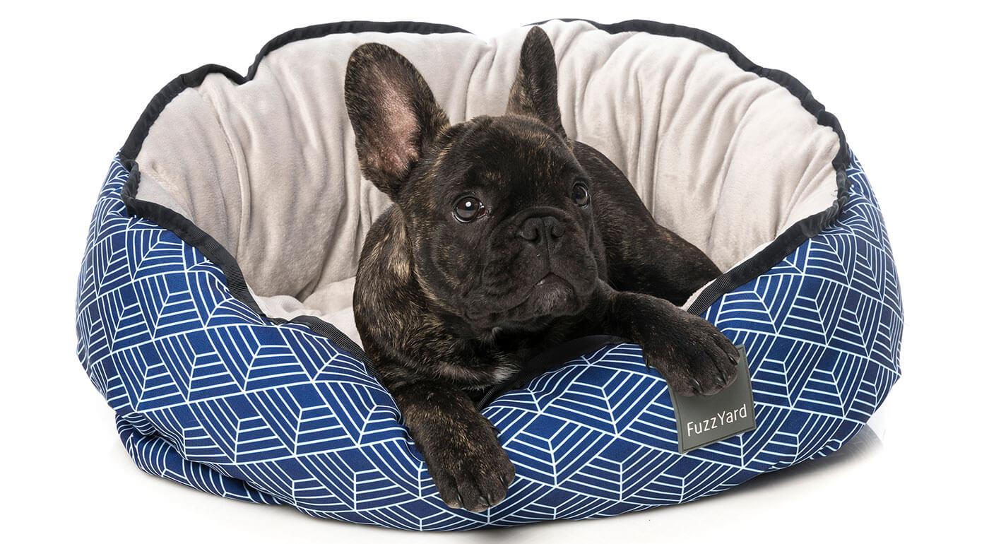 Plyšové alebo obojstranné Pelechy FuzzYard pre psy a mačky - výhradne iba u nás!