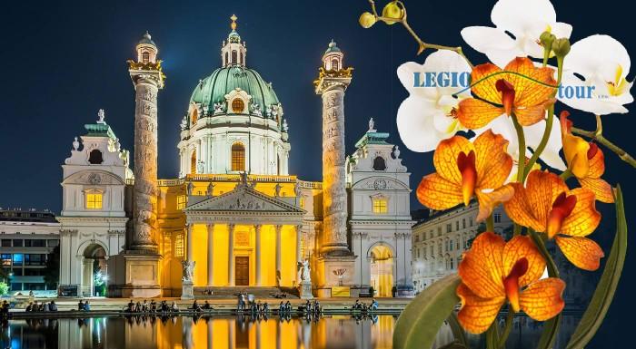 Rakúsko: výstava orchideí Klosterneuburg