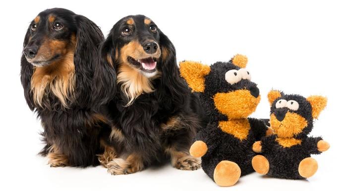 Odolné hračky pre psov FuzzYard