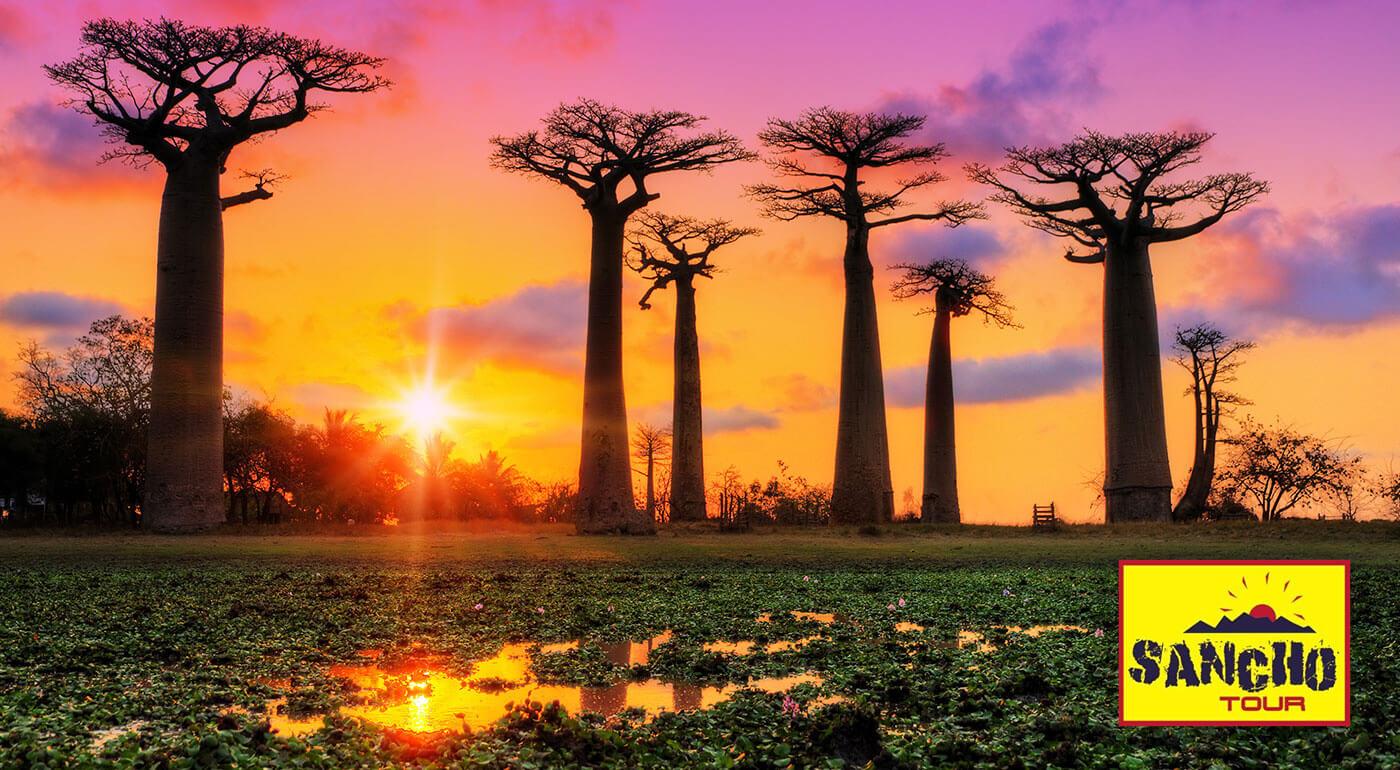 Skvelá zľava na 17-dňový zájazd Madagaskar: splnený cestovateľský sen