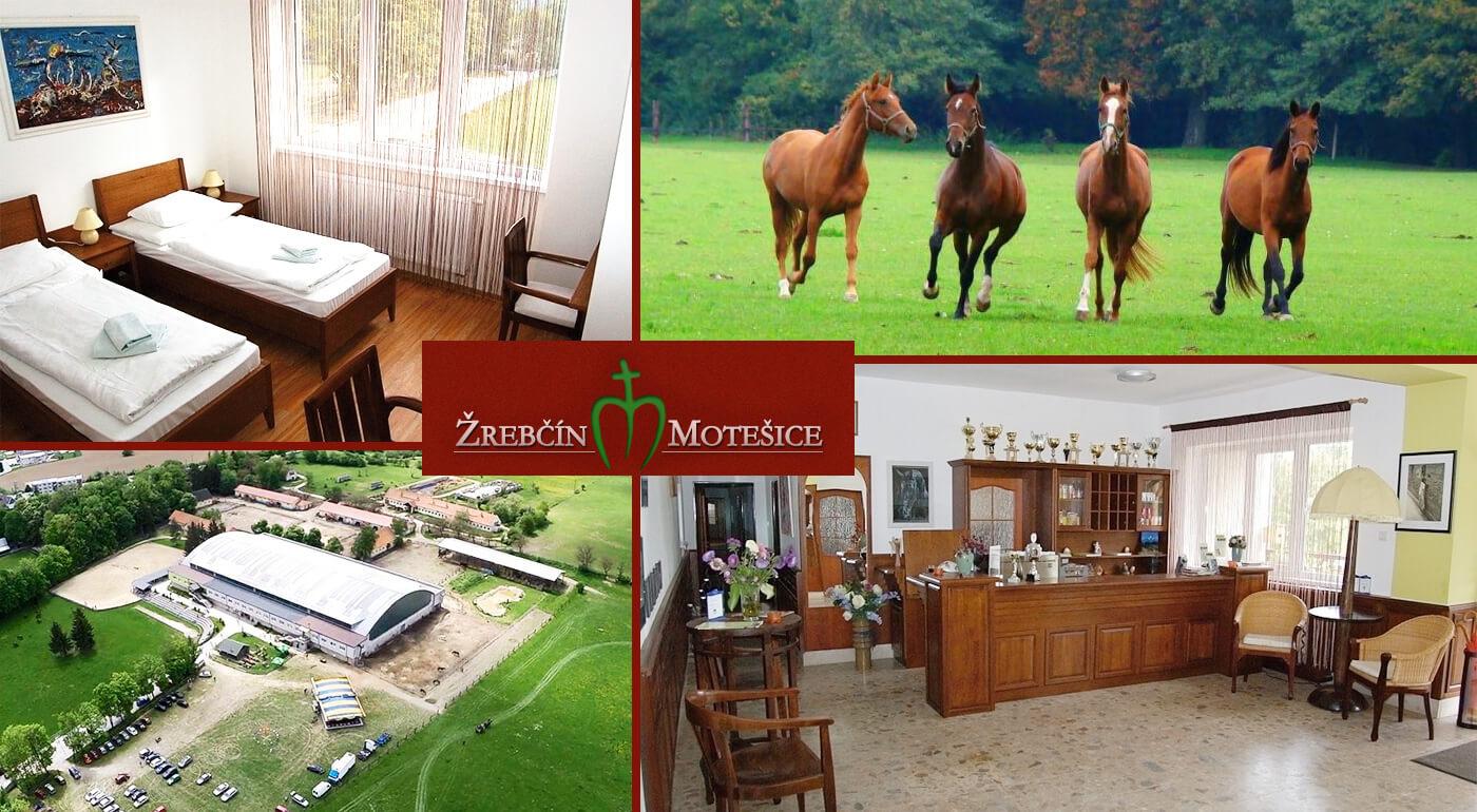 Dovolenka v spojení s prírodou: Pobyt pre dvoch v penzióne Žrebčín Motešice blízko mesta Trenčín s možnosťou jazdy na koni alebo na koči