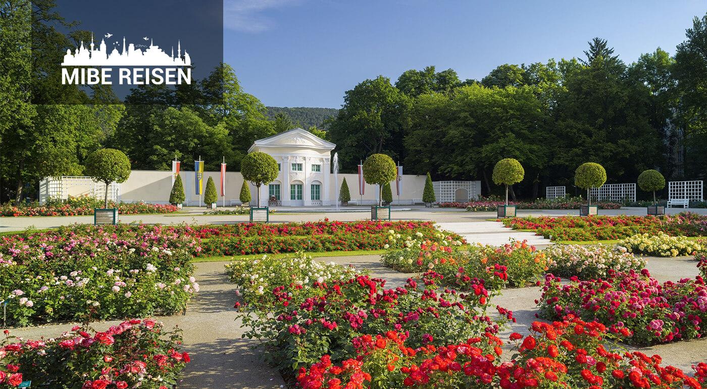 Rakúske Dni ruží v Badene a návšteva zámku Laxenburg
