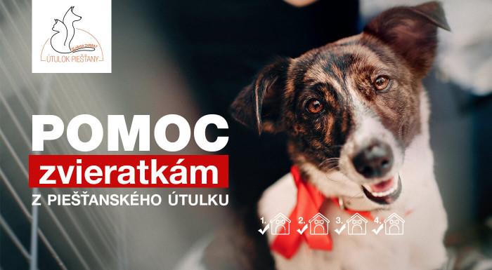 Pomoc pre psíkov v Útulku Piešťany