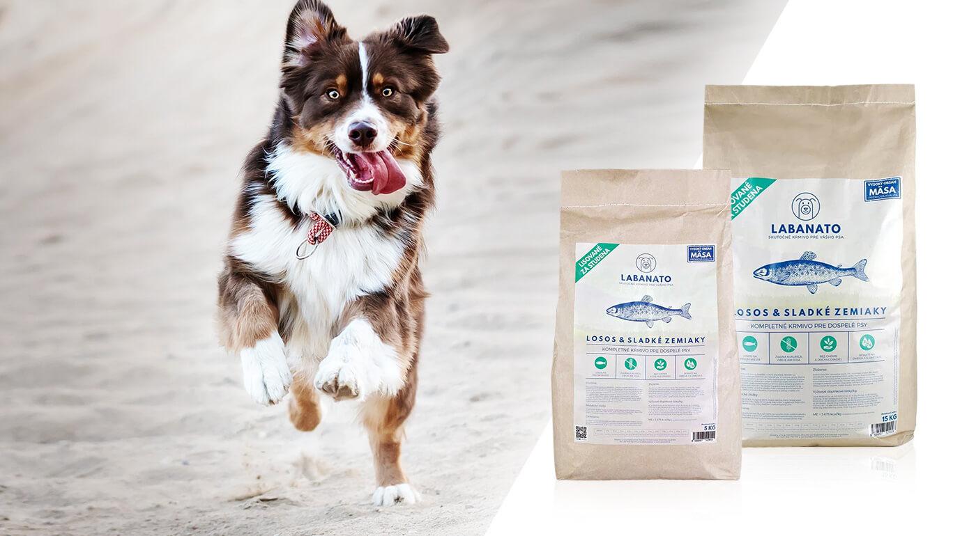 Granuly pre psov lisované za studena od slovenskej značky LABANATO bez chémie a obilia