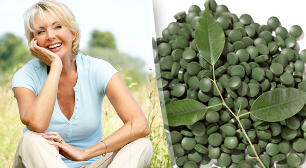 Chlorella - sladkovodná riasa (450 tabliet, 90g). Kompletný zdroj živín pre vaše telo!
