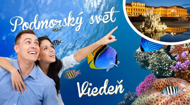 Podmorský svet a historická Viedeň. Zájazd do metropoly Rakúska.