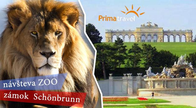 Viedenská ZOO, zámok Schönbrunn a jeho krásne záhrady. Zájazd do metropoly Rakúska.