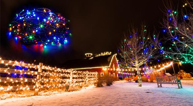 Fotka zľavy: Šesť farieb a tri druhy sviatočného LED osvetlenia už od 4,90 €. Pripravte sa na Vianoce a zabezpečte si všetko, čo k nim patrí!
