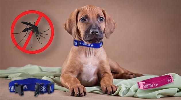 Antiparazitný obojok na prírodnej báze pre psy a mačky s účinkom až 4 mesiace