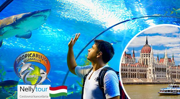 Jeden deň v Budapešti s návštevou Tropikária