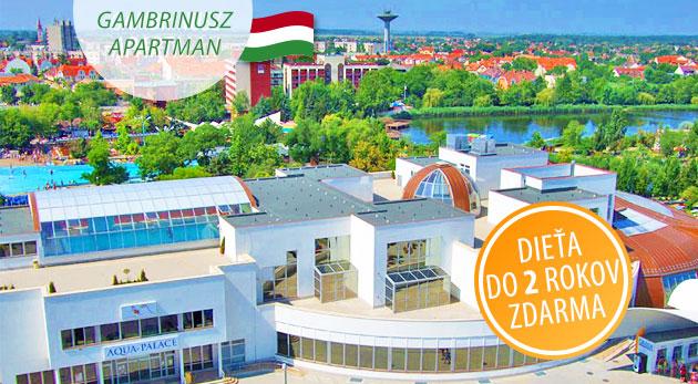 Oddych s ubytovaním v komfortných apartmánoch pri Hungarospa - najväčšom kúpeľnom komplexe v Európe