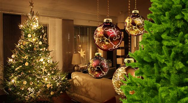 Vianočný stromček jedlička alebo borovica s výškou 120 cm až 220 cm - stačí ozdobiť a ste pripravení osláviť najkrajšie sviatky roka